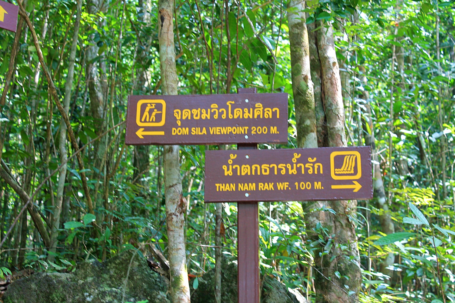 thailand watefall and viewpoint koh phangan jungle