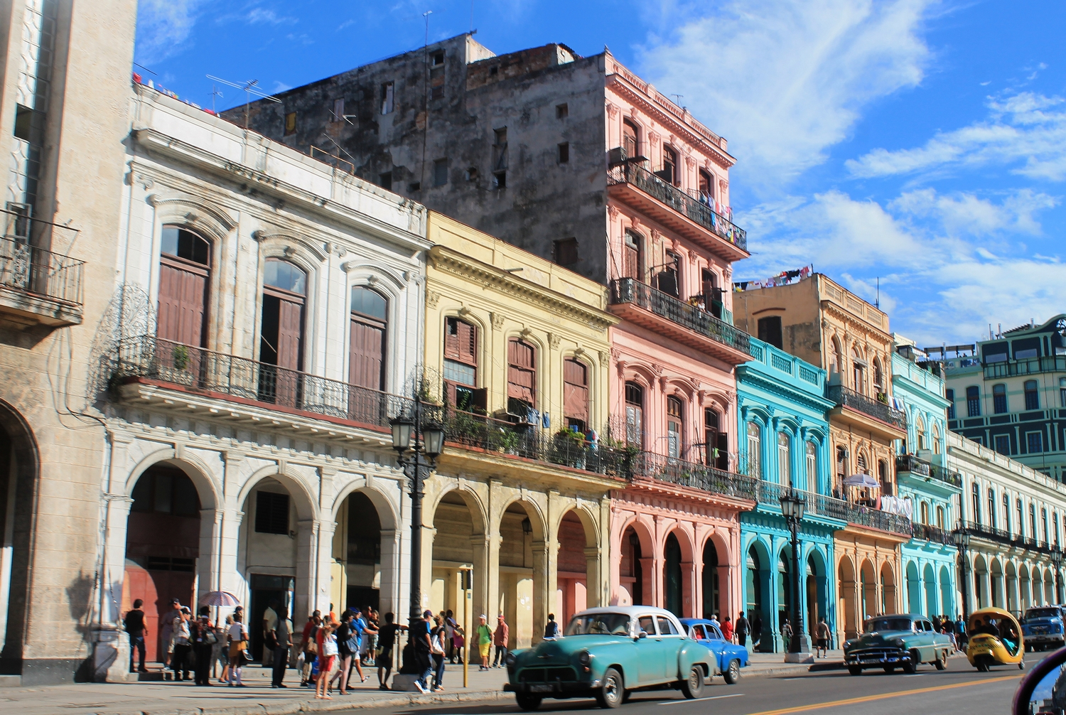 beautiful colorfull havana