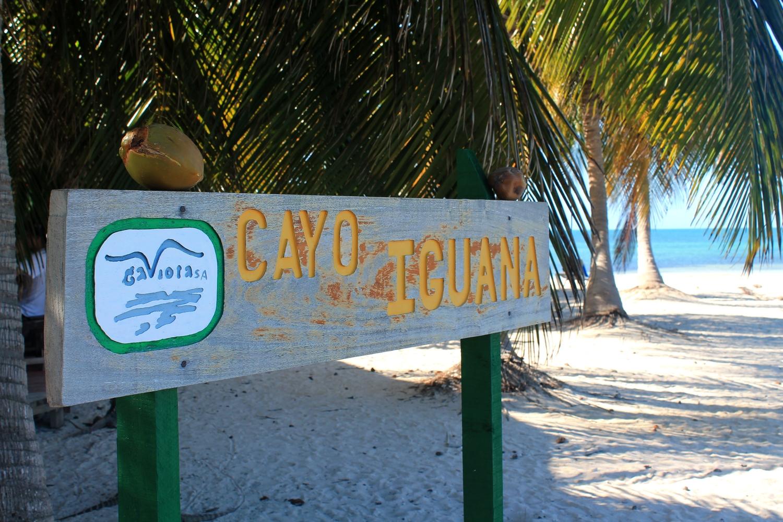 cayo iguana